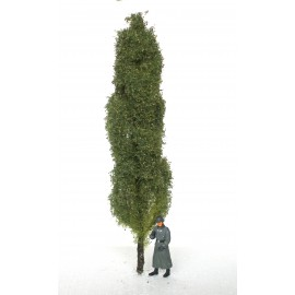 topol - 20 cm