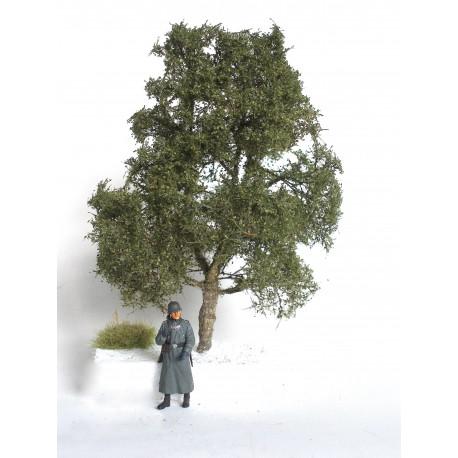 listnatí strom - 18 cm