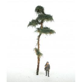 borovice 11 cm - 1/72 -