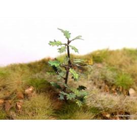 Dub listy zelené 200 ks